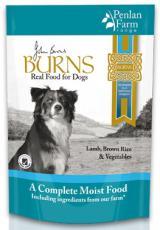 John Burns Penlan Lamb27642