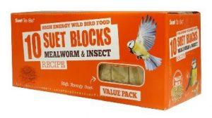 suet block mealworm